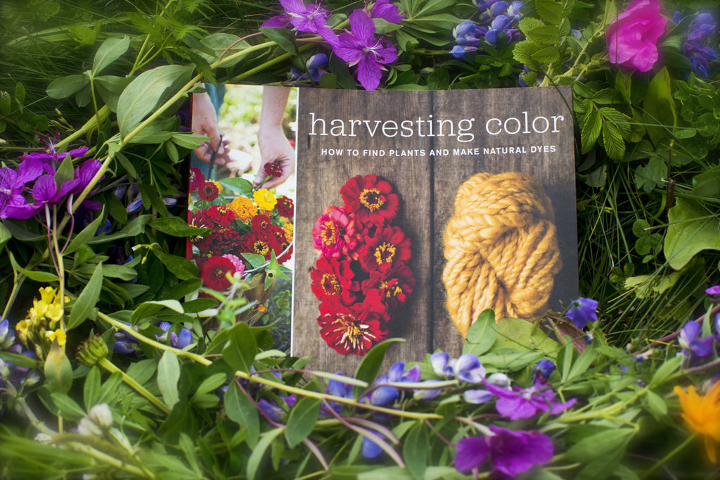 Harvesting Color:   How to find plants and make natural dyes
