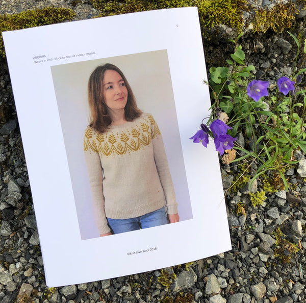 Anaashah Sweater Pattern by Jenn Steingass