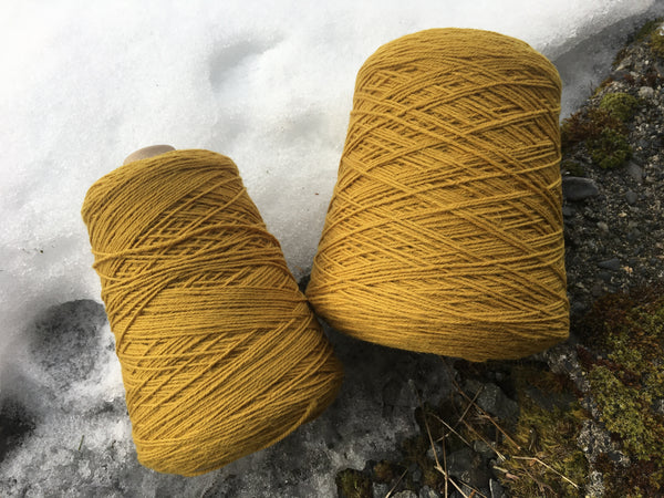 Frangipani 5-ply Guernsey Yarn CORNISH GOLD