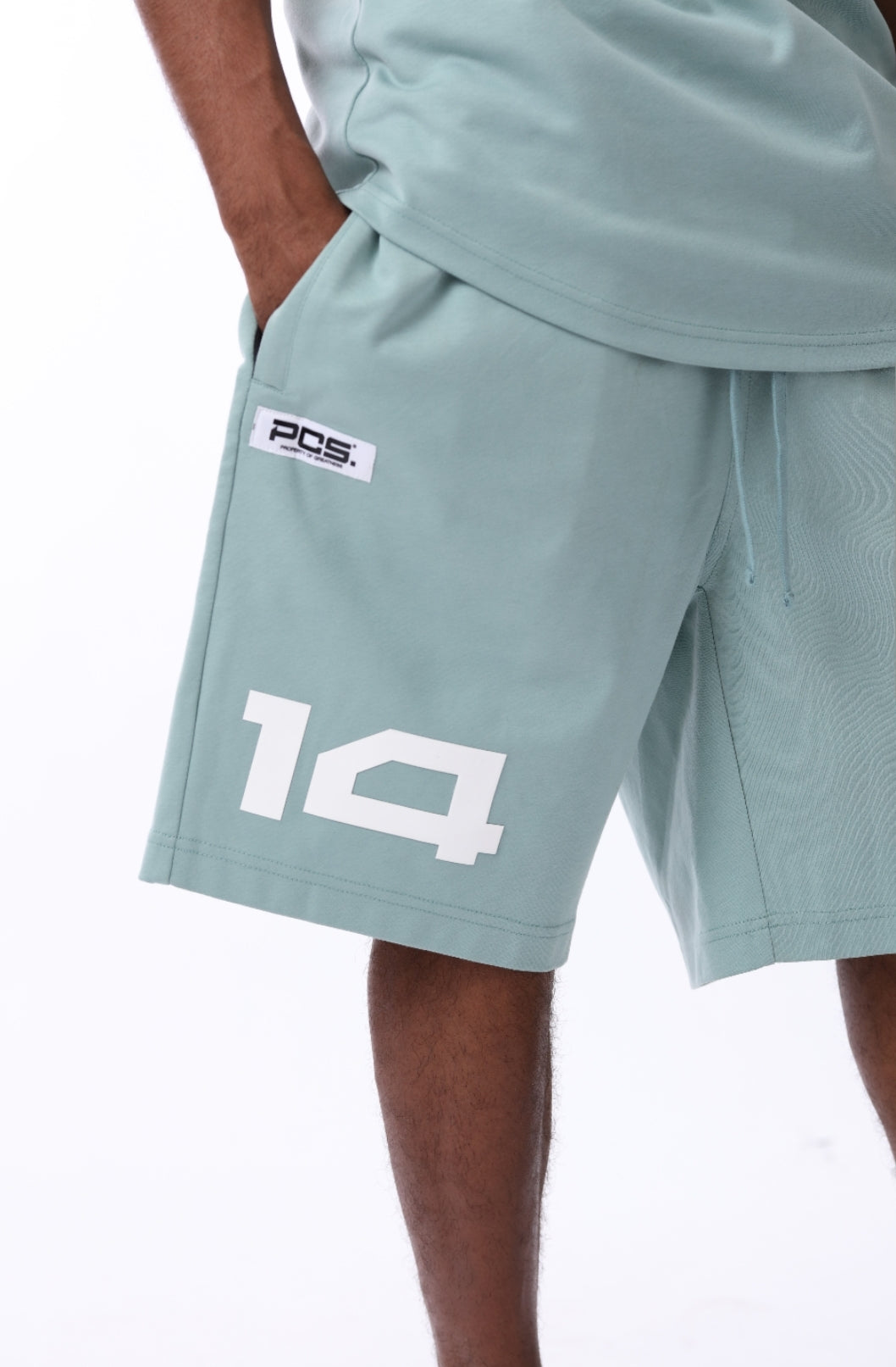 PCS  Men's Premium Shorts