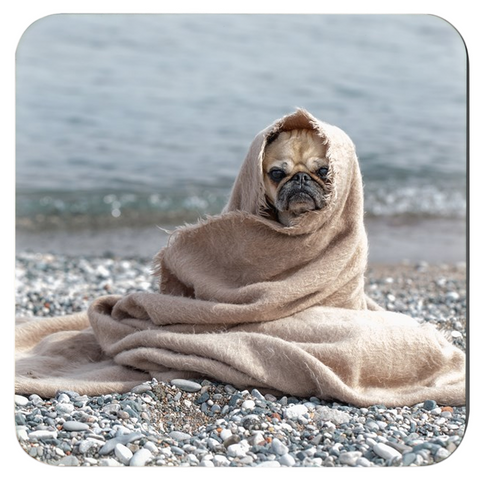 Opulent Dezignz™ Pug on Rocky Shores Inspirational Coasters