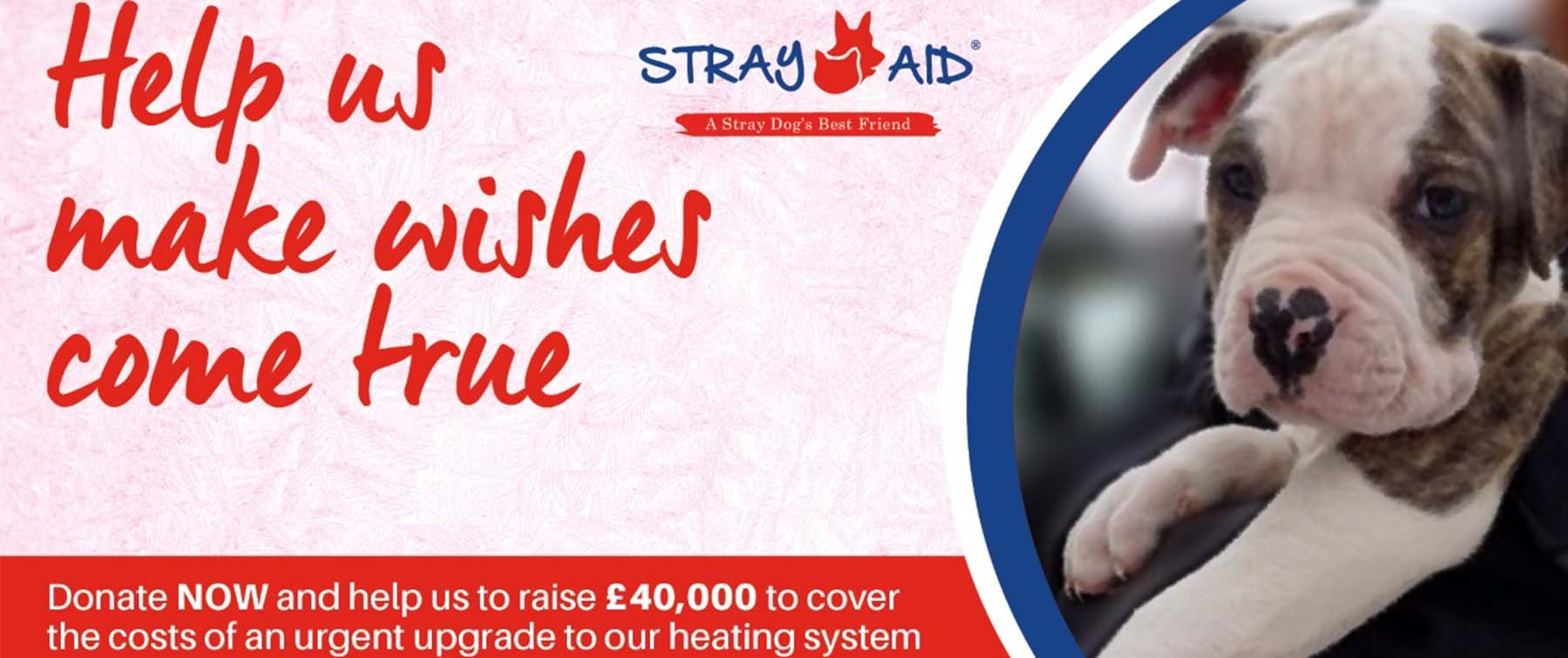 Stray Aid - The Urgent Heating Upgrade Appeal