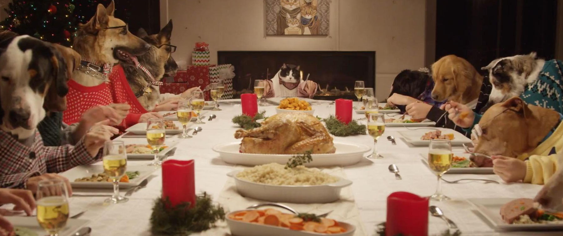 Christmas Dinner: The Dog Do's and Dont's