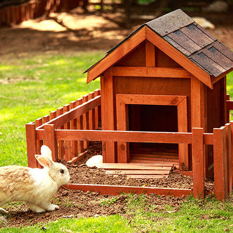 Rabbit Cages Hutches & Runs