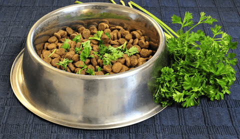 parsley in food bowl