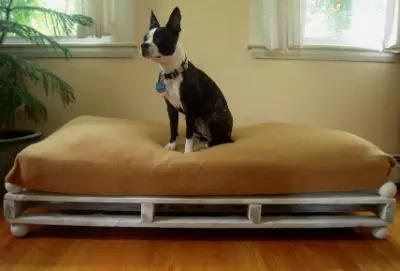 dog on a diy dog bed