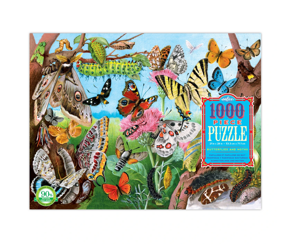Butterflies and Moths: 1000 pc