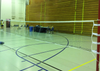 FZ FORZA Tournament Badminton Net
