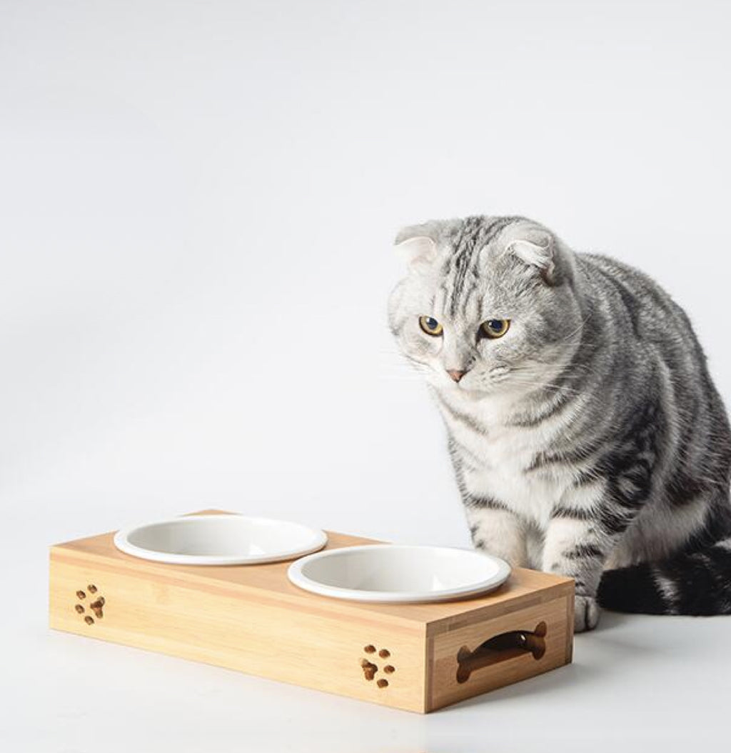 Bamboo Cat Bowl