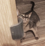 Cat Self Grooming Brush