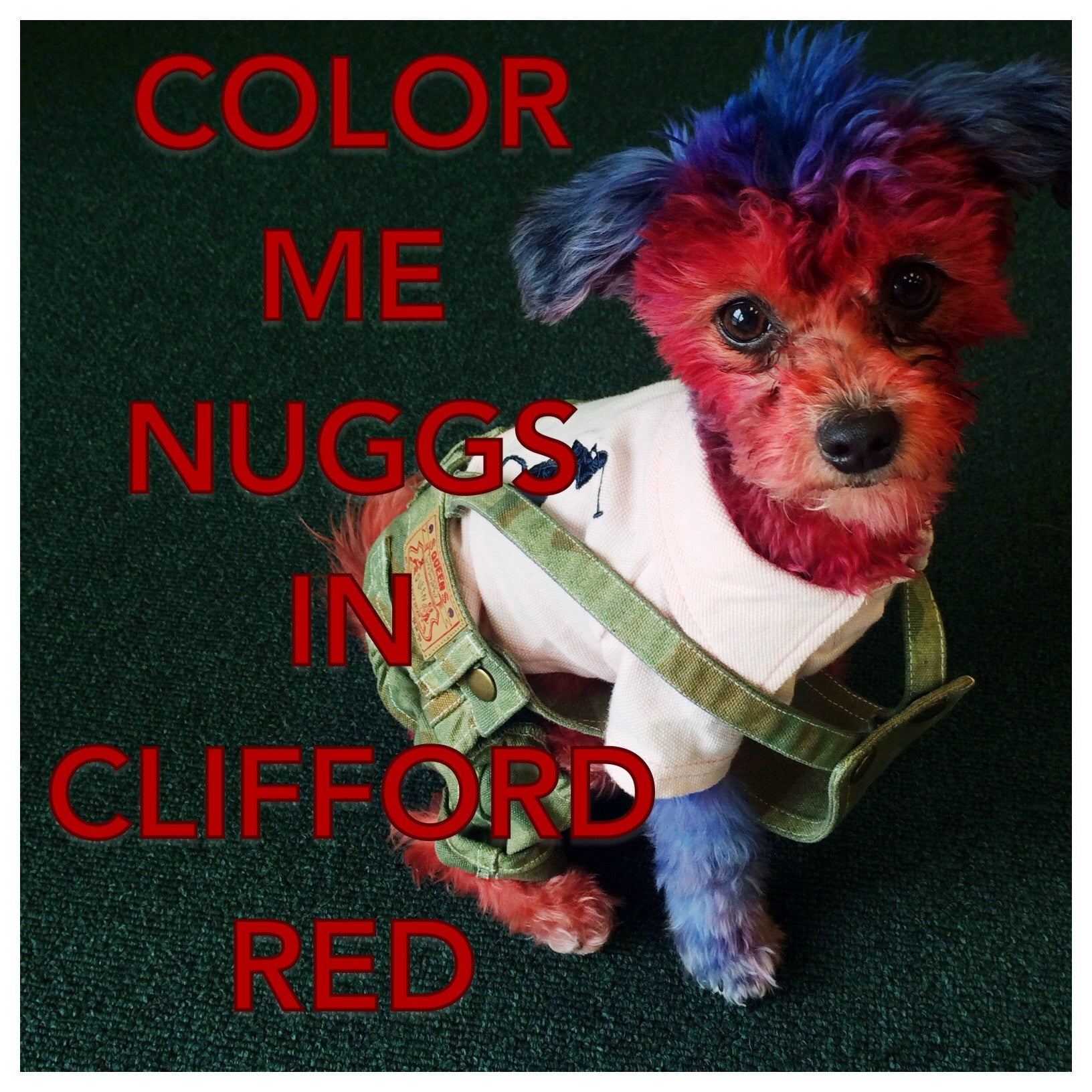 ColorMeNuggs in Clifford Red