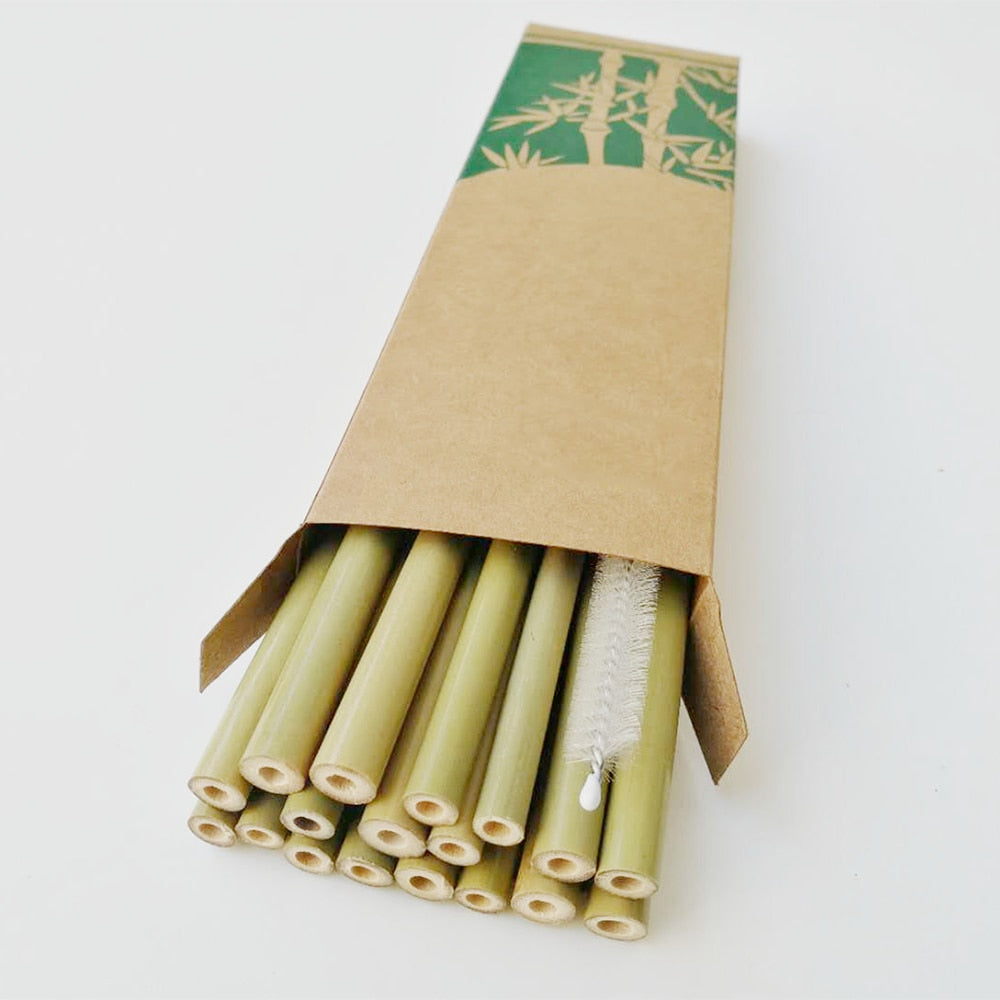 10x Bamboo Straws & Cleaning Brush