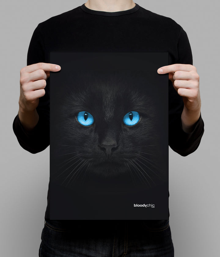 Cat Blue Eyes_A3 Poster