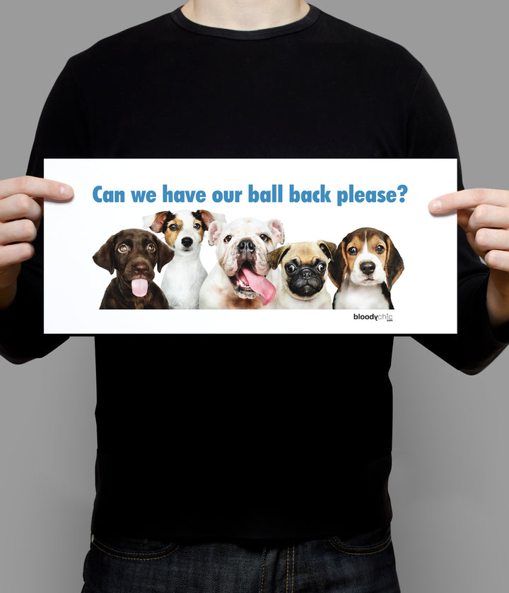 Dogs Ball_Landscape Poster