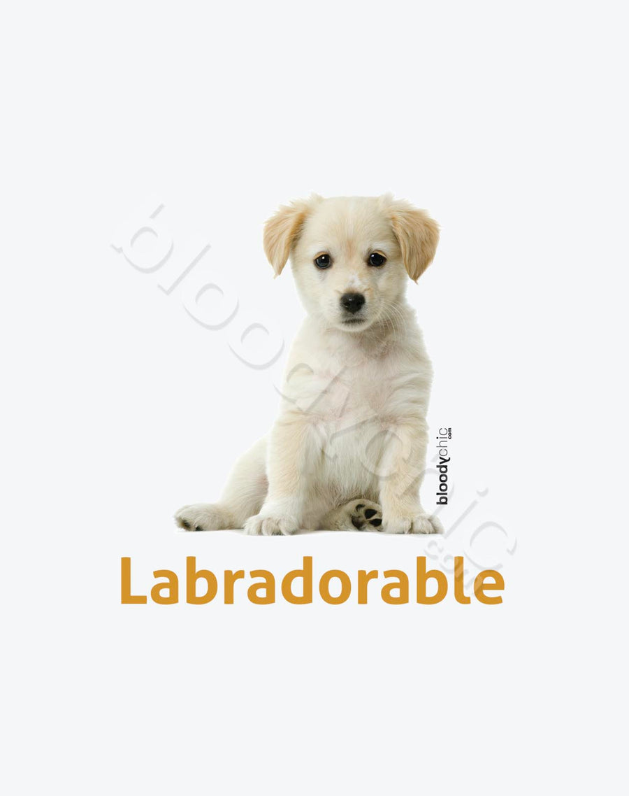 Labradorable_White