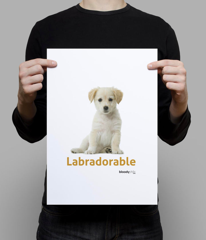 Labradorable_A3 Poster