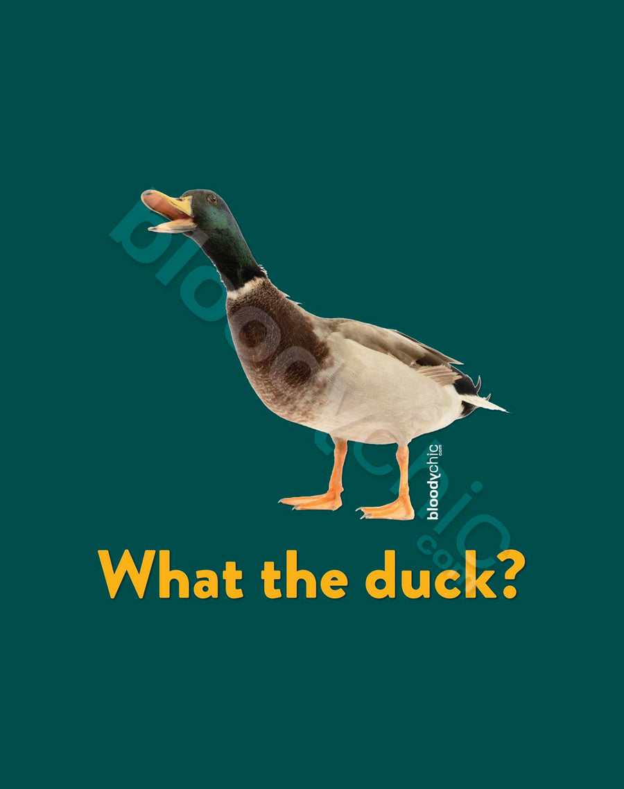 What the Duck?_Multi