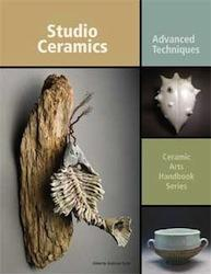 Studio Ceramics: Advanced Techniques