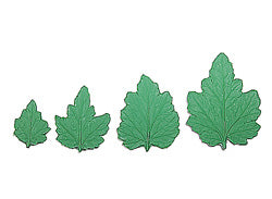 Mum Leaf Stamp Set