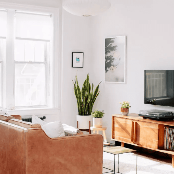 Modern Apartment Décor - Design Tips from Industry Experts