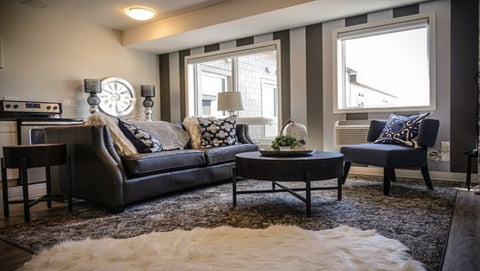 How to buy best area rugs or carpet