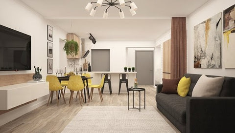 Modern Apartment with rug & furniture