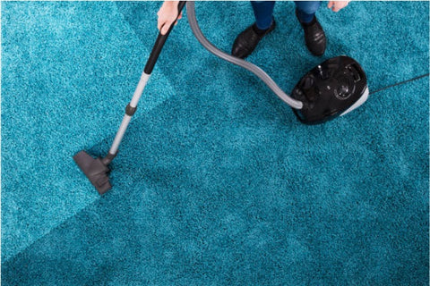 Professional cleaning of a shaggy rug