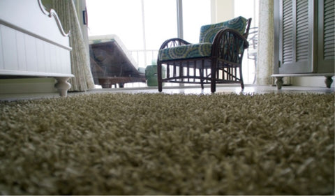 Best ways to clean a shaggy rug