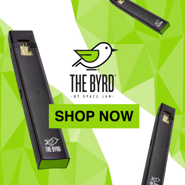 The Byrd Shop Now