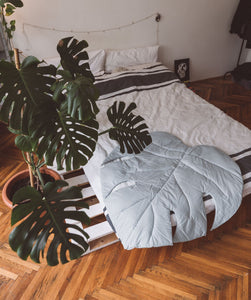 Monstera leaf | M size