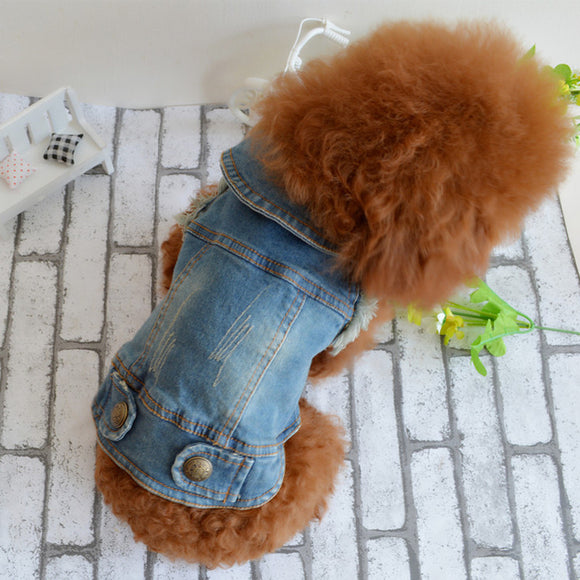 Dog clothes pet autumn and winter cowboy clothing