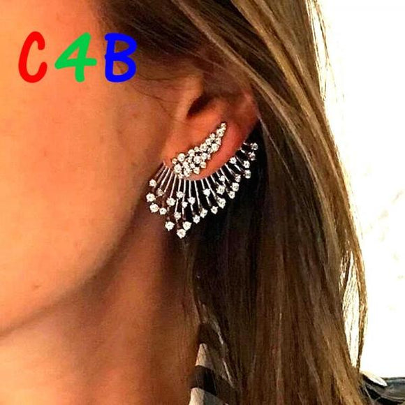 Statement Crystal Stud Earrings - Come4Buy eShop