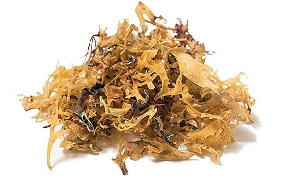 Irish Sea Moss- Seaweed - 100% Organic - Alkalising/Mineral rich/Superfood