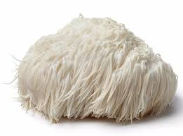 Lions Mane Mushroom Powder - 100% Natural - Organic