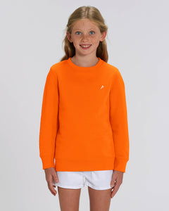 ORANGE ICONIC P SWEATER