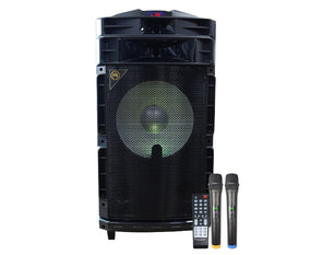 LG15P Portable Party Speaker