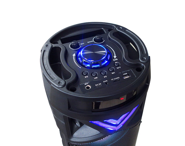 Bluetooth Party Speaker with FM Radio Flashing Lights Remote Control FT008