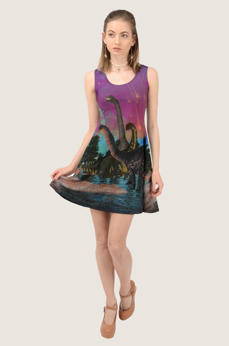 Dinosaur Sunset Skater Dress