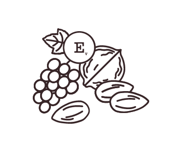Bowl of sea salt illustration