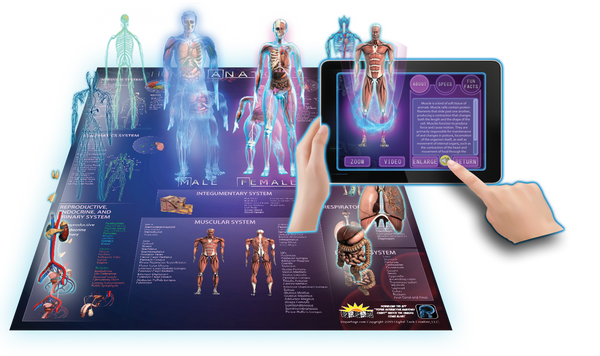 3D Interactive Science Posters from Popar Toys