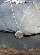 Load image into Gallery viewer, P455BC-Scallop Shell Pendant