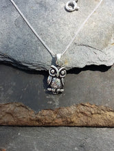 Load image into Gallery viewer, P492-Owl design 925 silver pendant