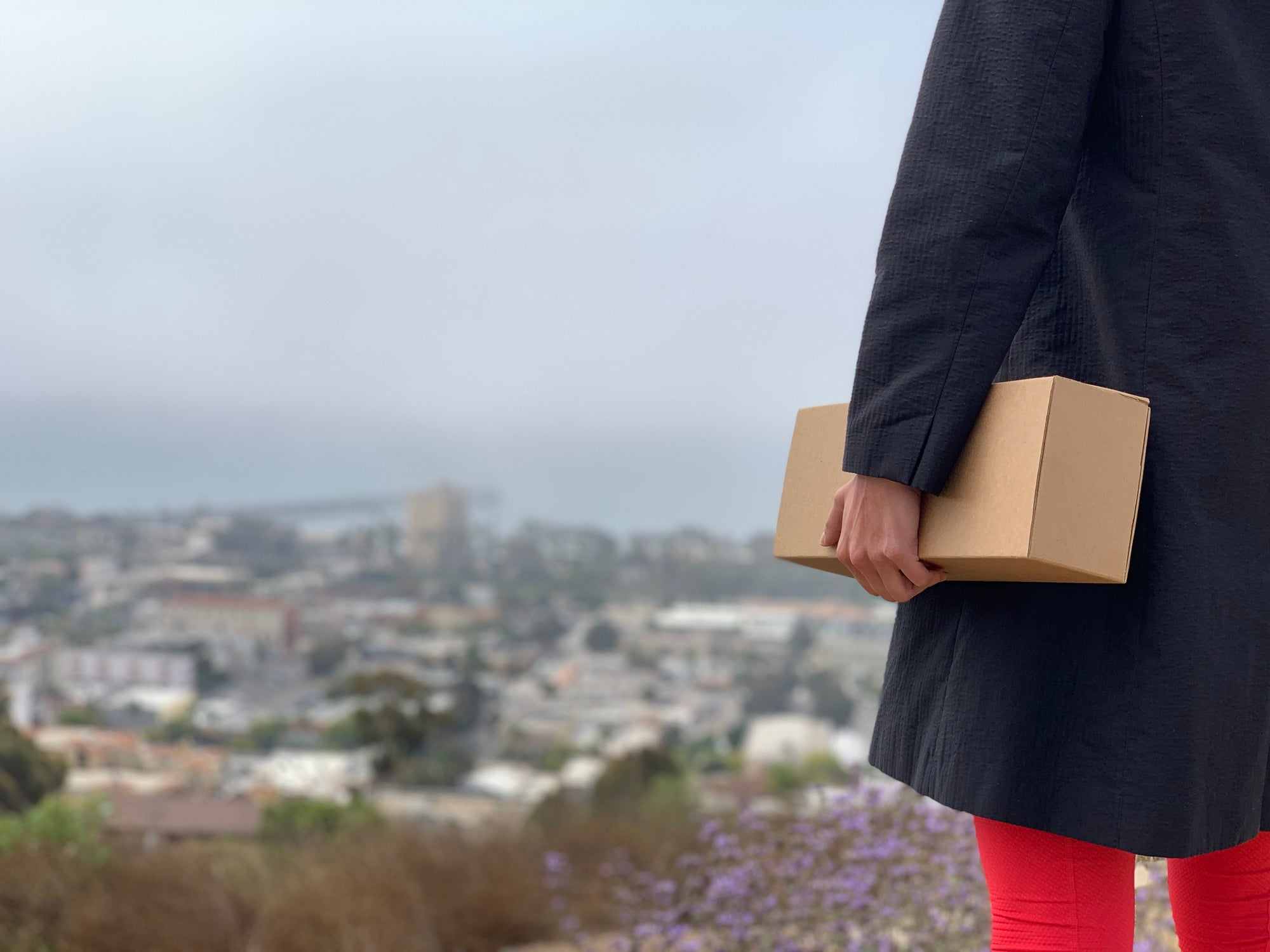 girl holding flush packaging box with view of ventura california