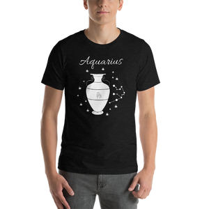 Vibe Luck Aquarius Water Bearer Zodiac Sign Birthday Short-Sleeve Unisex T-Shirt
