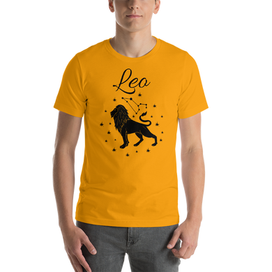 Vibe Luck Leo Lion Zodiac Sign Birthday Short-Sleeve Unisex T-Shirt
