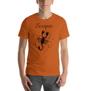 Vibe Luck Scorpio Scorpion Zodiac Sign Birthday Short-Sleeve Unisex T-Shirt