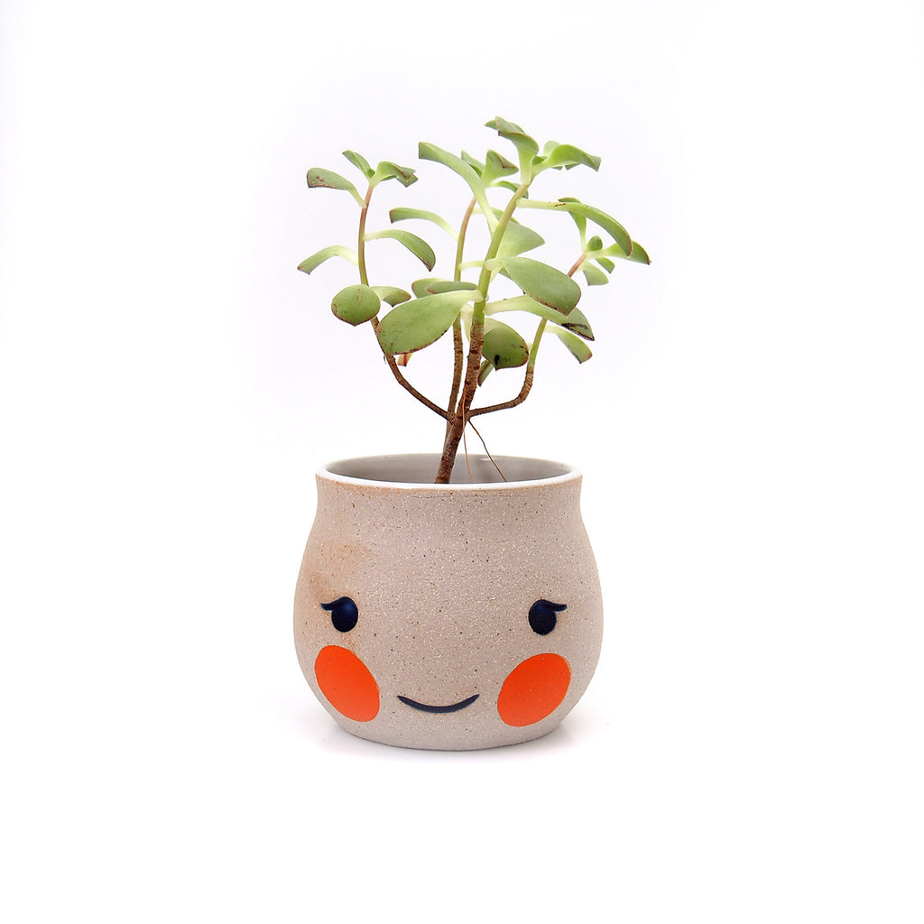 Blushie Beastie Planter with drainage hole