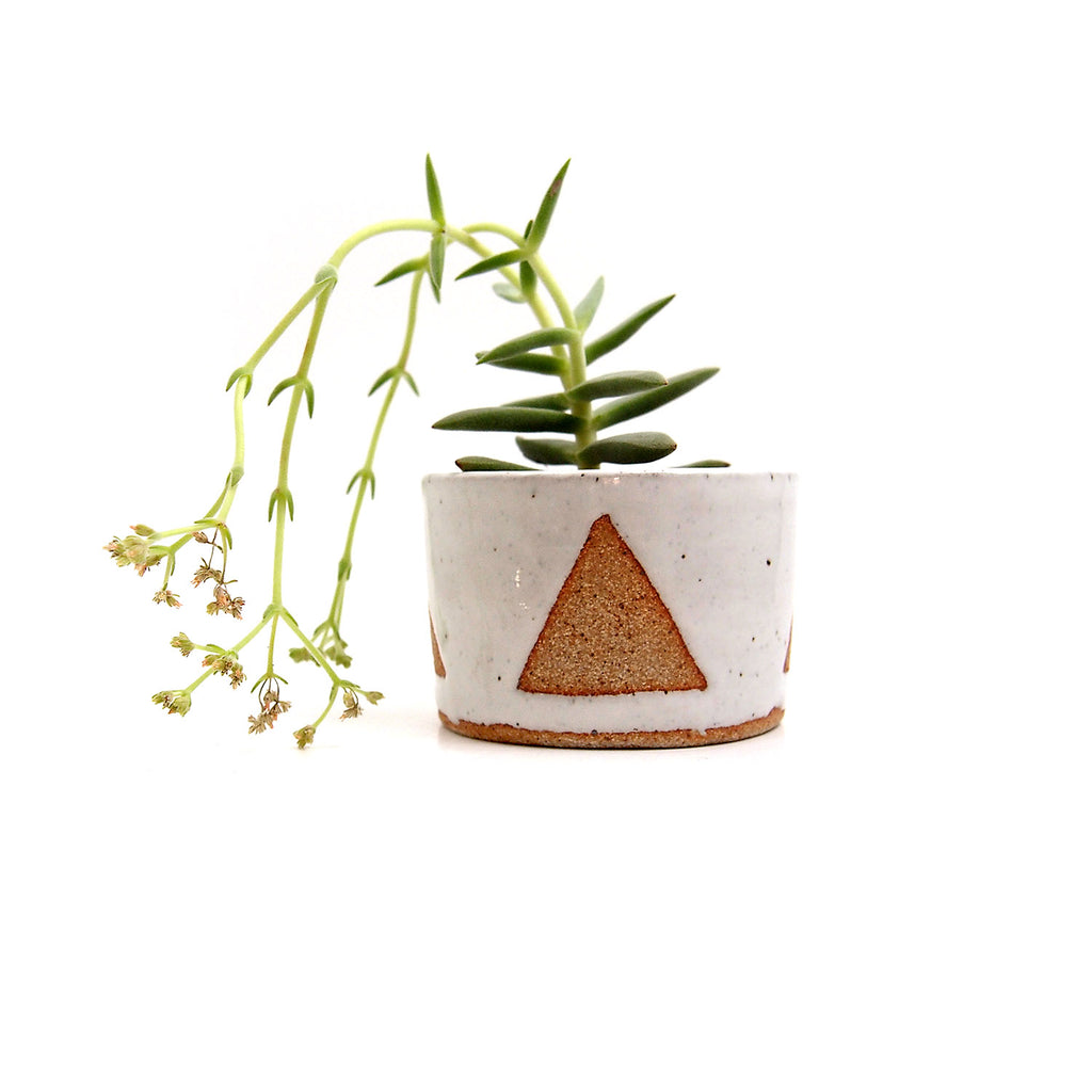Triangle Planter/Bowl