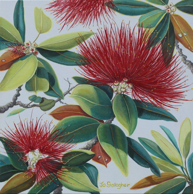 Jo Gallagher-The Pohutukawa Flower