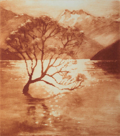 Philip Beadle-The Tree Wanaka. Solarprint